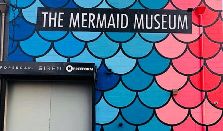 Mermaid museum 2